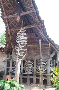 toraja papa batu roof north